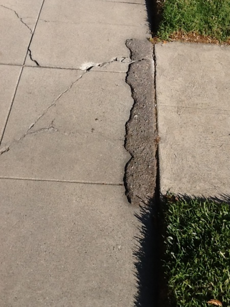 Broken Lifted And Cracked Sidewalks Are A Hazard L A